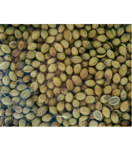 TRS Whole Coriander (Dhania Seeds) - 100g