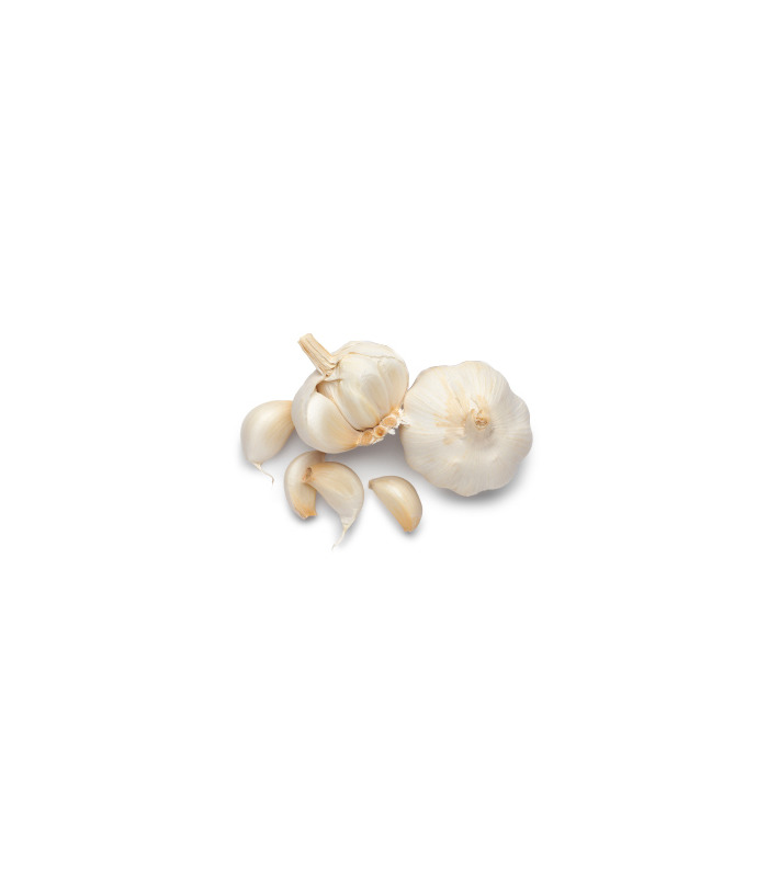 Fresh Garlic (Free)
